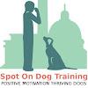 Spot On Dog Training
