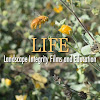 LIFE - Landscape Integrity Films and Education