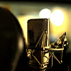 Voice Overs By Terry Daniel, Inc