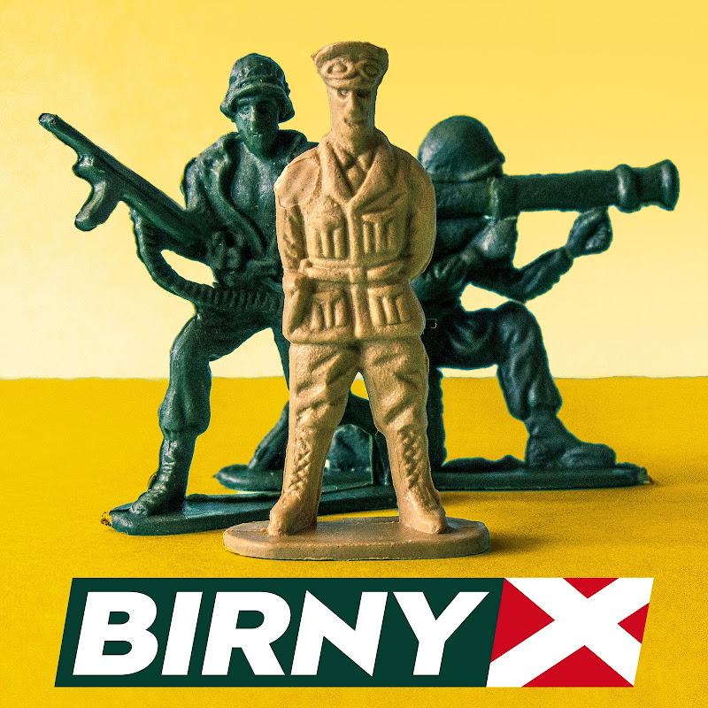 BirnyX