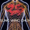 Sung Wing Chun - Chu Shong Tin method in Sheffield