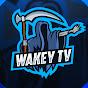 Wakey TV (wakey-tv)