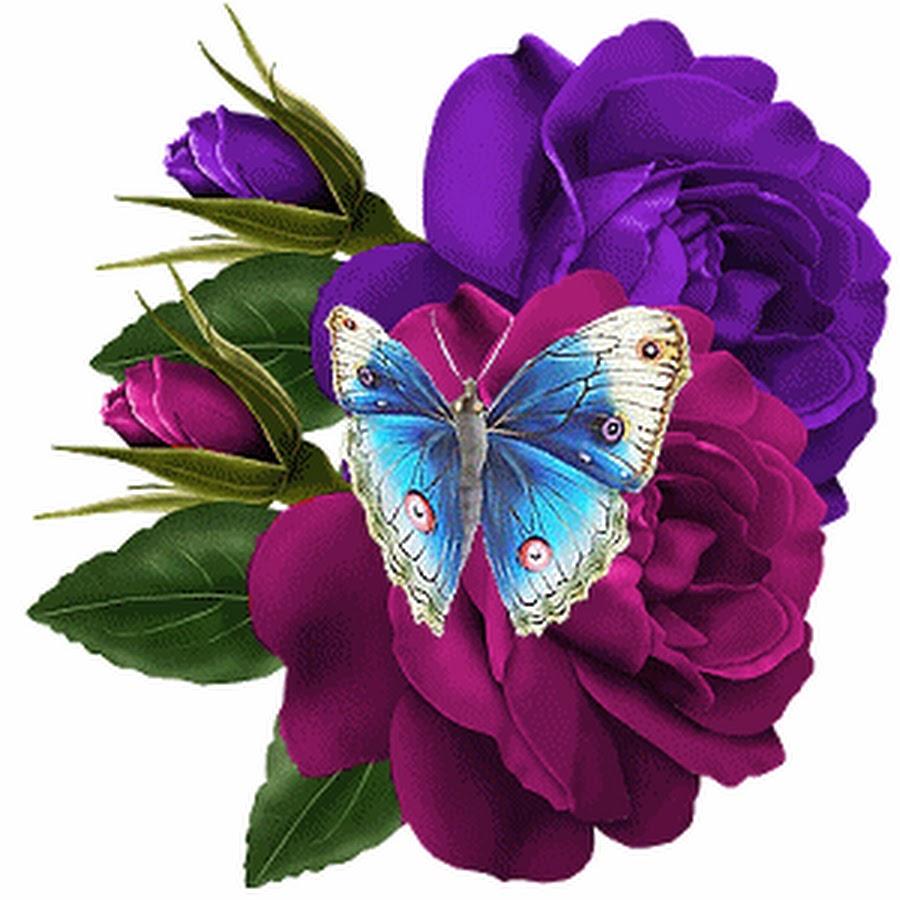 Анимация с бабочкой открытка, картинки для детей