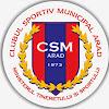 Csm Arad