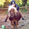 Ferme Equestre Bois-Guilbert