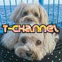 T- channel