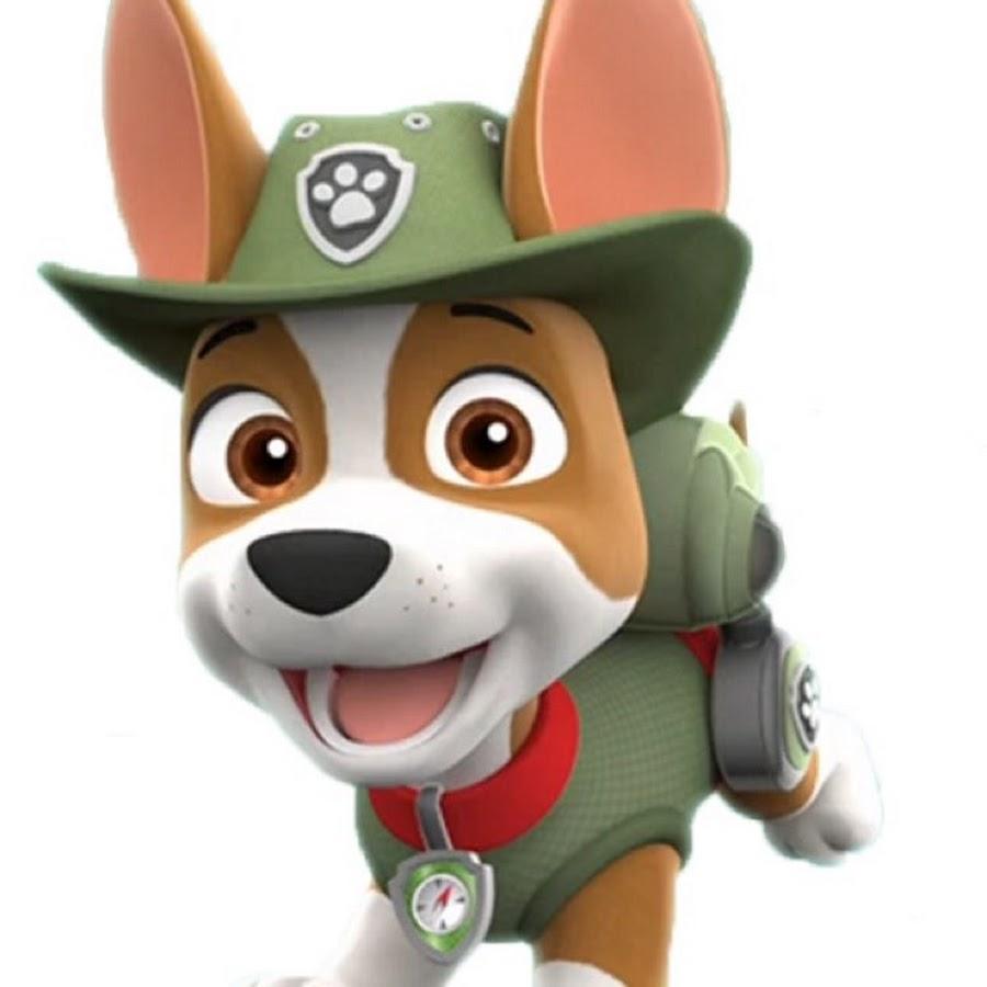 tracker paw patrol  youtube