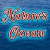 Naturesocean