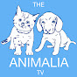 The Animalia Tv (the-animalia-tv)