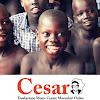 Fondazione CESAR