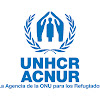 ACNUR La Agencia de la ONU para los Refugiados