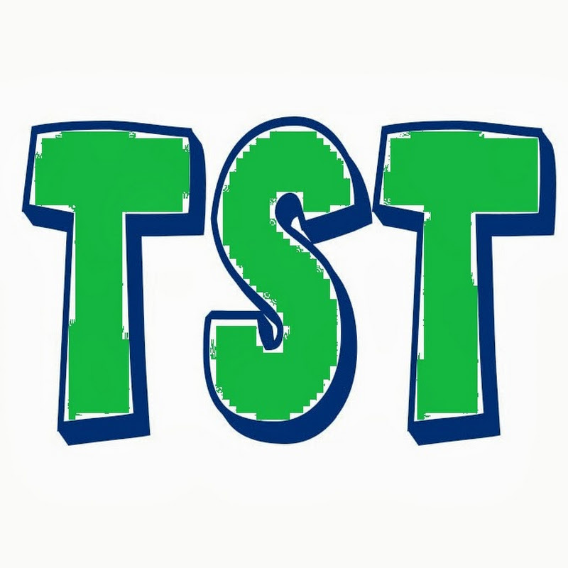 TroubleSeekerTeam YouTube channel image