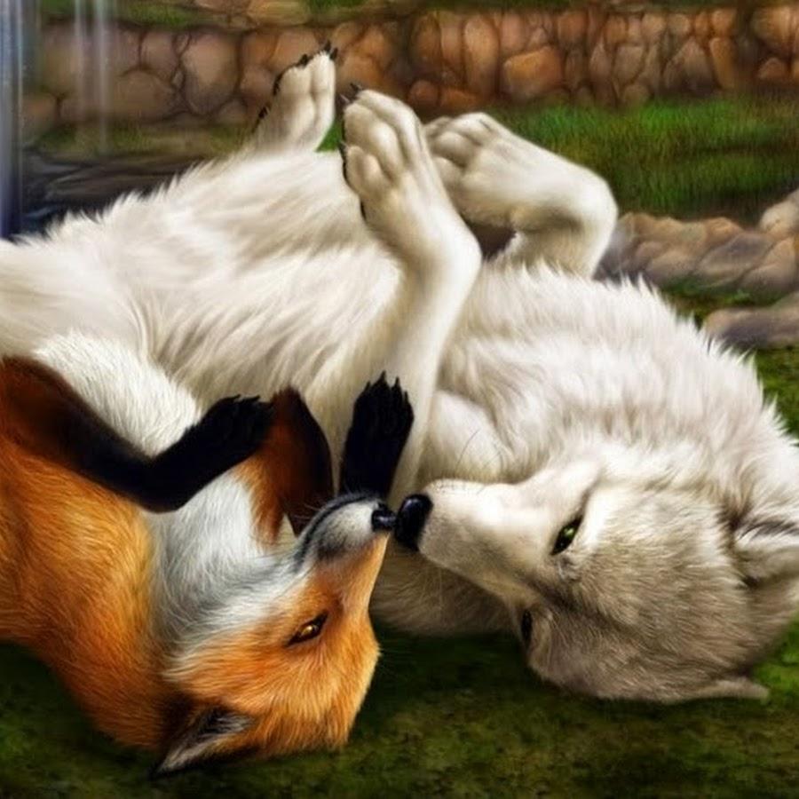 все волк с лисой прикольные картинки программ для