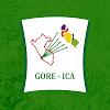 Gobierno Regional de Ica Oficial