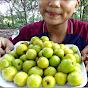Primitive Pailin