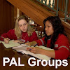Peer Assisted Learning Groups for College Students