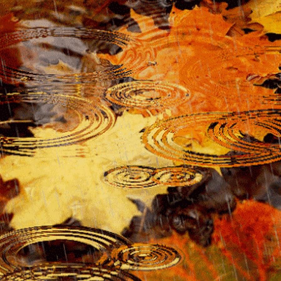 Здесь, осень дождик гифы