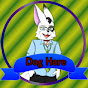 Dog Hare Productions (dog-hare-productions)
