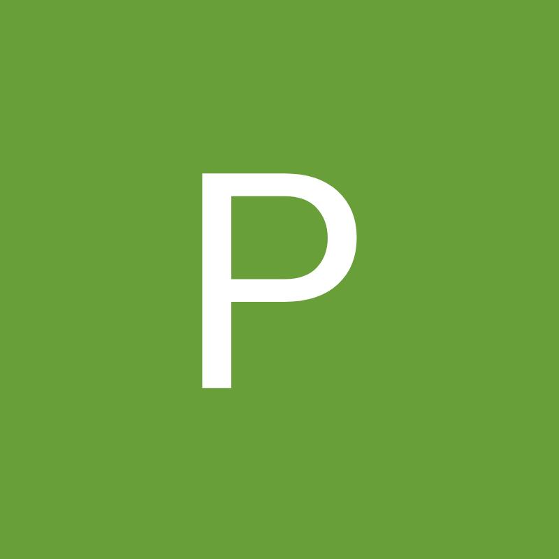 PAN - Die Parteilosen
