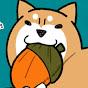 柴犬どんぐり Shiba Inu