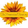 The Promiseland Farm
