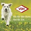VDH1906