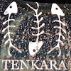 TenkaraGuides