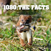 1080 The Facts