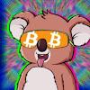 Crypto Koala