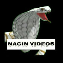 Nagin Video Editor
