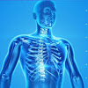 Gold Coast Orthopedic-Spine and Hand Surgery