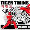 Tiger Twins Tae Kwon Do Curriculum