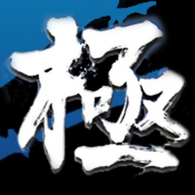 TAS] Tekken 5 - Jin Kazama | FunnyCat TV
