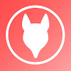 Rogue Fox