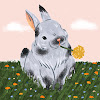 Suzhou Full Color Paper Industrial Co.,Limited