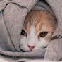 YouTuber Shubham