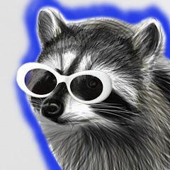 RaccoonEggs Net Worth
