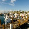 Old Bahama Bay, West End