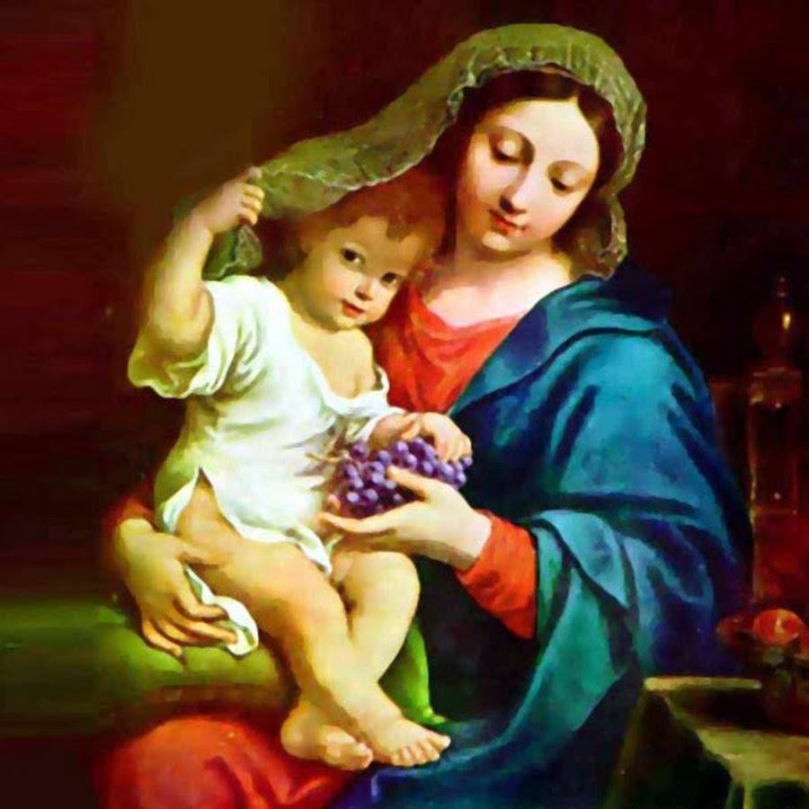 saint marys univers study - 495×511