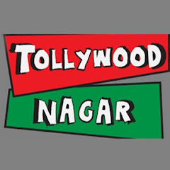 Tollywood Nagar Net Worth