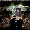 Assaf Adry