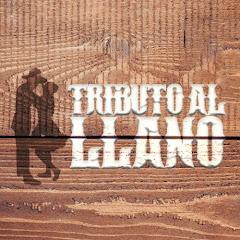 Musica Llanera