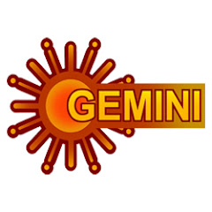 Gemini TV Net Worth