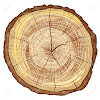 Kodiak Tree Services