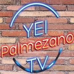 Quanto Ganha Yei Palmezano TV