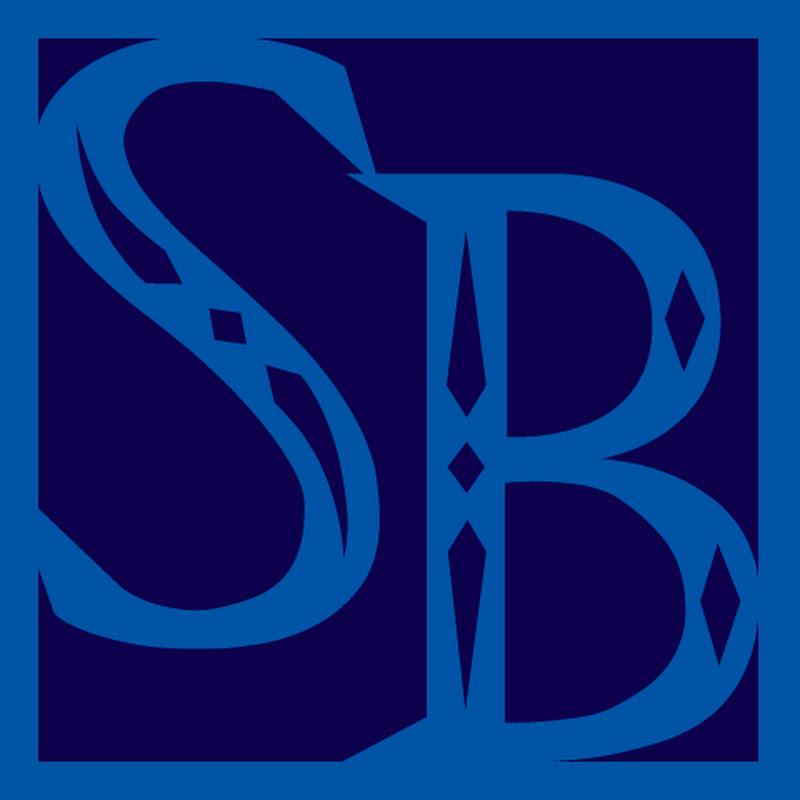 Sentai Brad (brad2008)