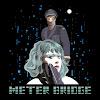 MeterBridge357