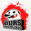 Les Ours Molaires