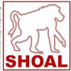 SHOALgroup
