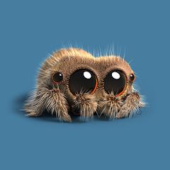Lucas the Spider Net Worth